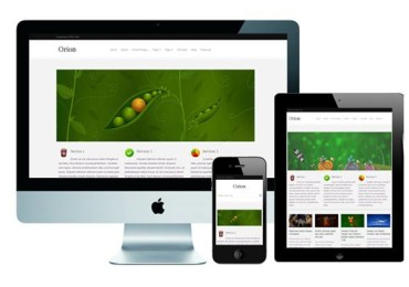 Top 10 Responsive WordPress Themes in 2015