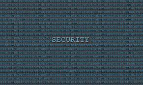 Citizen Developers and Cyber Security Risks for Businesses